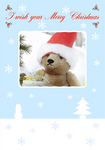 Christmas06_samp.jpg