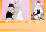 Wedding05_samp.jpg